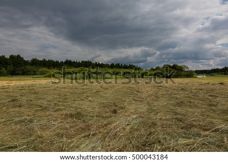 Just moved meadow before rainfall in summer, Bialowieza Forest, Poland, Europe