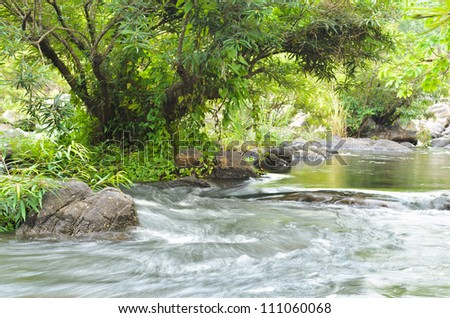 Kaengsommaw. Small streams in tropical forests of Thailand.