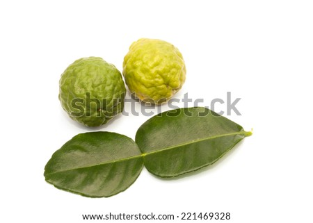 Kaffir lime isolated on the white background - stock photo