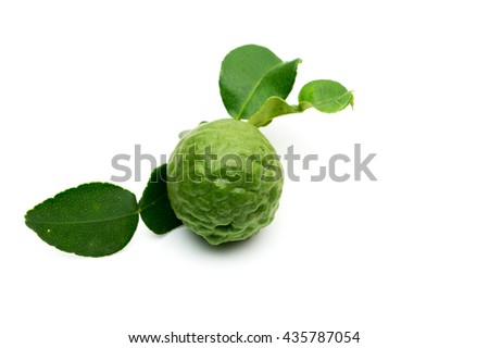 Kaffir lime Thai herbs isolated on white background. - stock photo