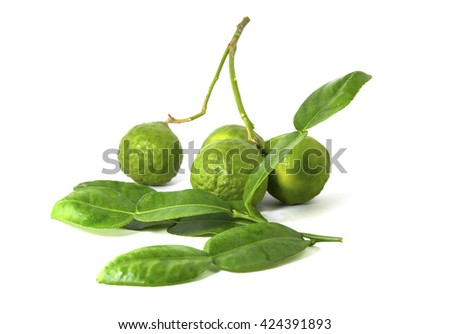 Kaffir lime with isolated on white background