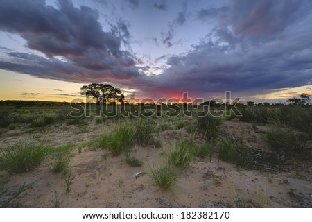 Kalahari Desert Sunset at Grootkolk, Kgalagadi Transfrontier Park, South Africa. Multiple image exposure stack. - stock photo