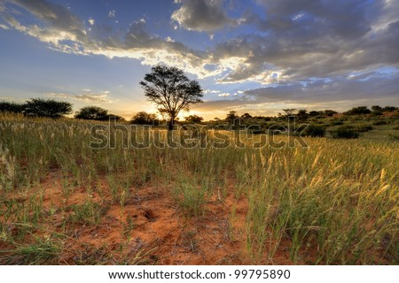 Kalahari sunset. 9 image exposure stack. Loch Broom, Askam, Northern Cape, - stock photo