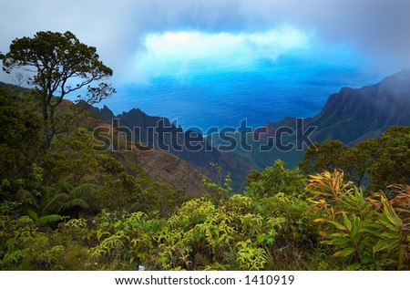 Kalalau lookout on Kauai on Kauai Hawaii. More with keyword Series001D. - stock photo