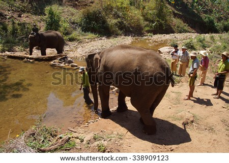 KALAW, BURMA - FEB 27, 2015 - Mahout brings his elephant down to the water to bathe at the  Elephant conservation camp near Kalaw Myanmar (Burma)