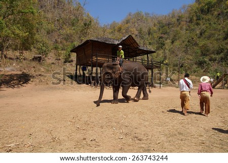 KALAW, BURMA - FEB 27, 2015 - Mahout rides his elephant in the  Elephant conservation camp near Kalaw Myanmar (Burma) - stock photo