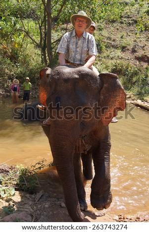 KALAW, BURMA - FEB 27, 2015 - Tourist rides an elephant in the  Elephant conservation camp near Kalaw Myanmar (Burma) - stock photo