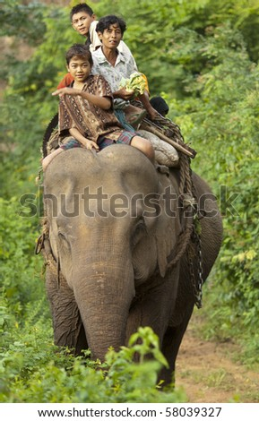 KALAW, BURMA- MAR 13: child laborer  with working elephant crossing a river in the jungle  MAR 13, 2010 in Kalaw, Burma (Myanmar). - stock photo