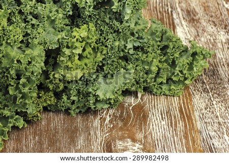 kale - stock photo