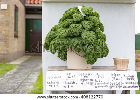 Kale for sale on the street in front of a house.Translated L>R: parsley, Onions, beetroot, green and string beans, leek, Curly Kale on demand, tulips (red), Hyacinths (Pink) asked empty bread bags - stock photo