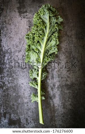 Kale leaf, overhead view on dark slate. - stock photo