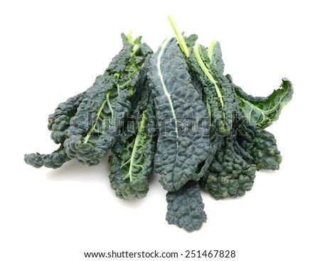 kale leaf vegetable closeup on white background - stock photo