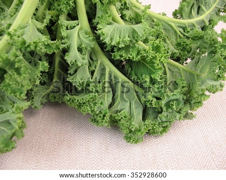 Kale leaves - stock photo
