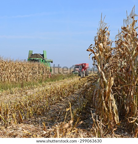 Kalush, Ukraine â?? OCTOBER 8: Modern John Deere combine harvesting corn  in the field near the town Kalush, Western Ukraine October 8, 2013 - stock photo