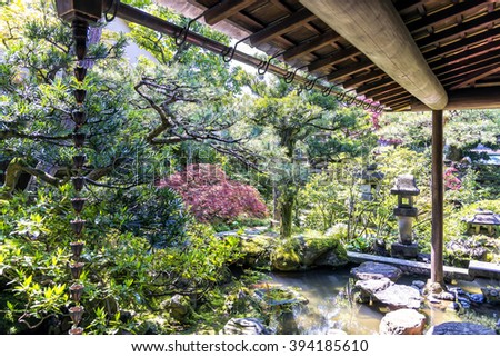 Kanazawa, Japan - April 24, 2014: The small japanese garden of Nomura samurai family residence in Kanazawa Nagamachi district. The Nomura were a high ranked samurai family in japan's feudal era. - stock photo