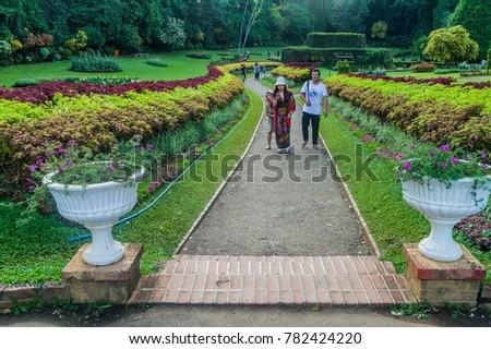 Royal Botanical Gardens Of Peradeniya Stock Images