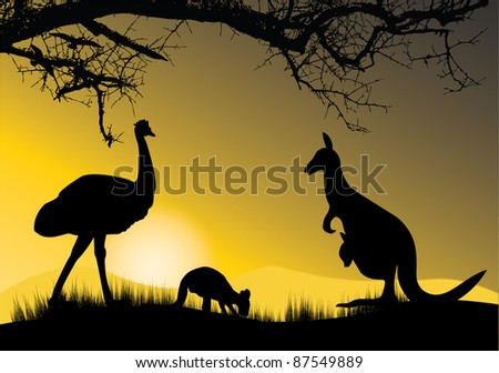 kangaroo and emu in the sunset - stock photo