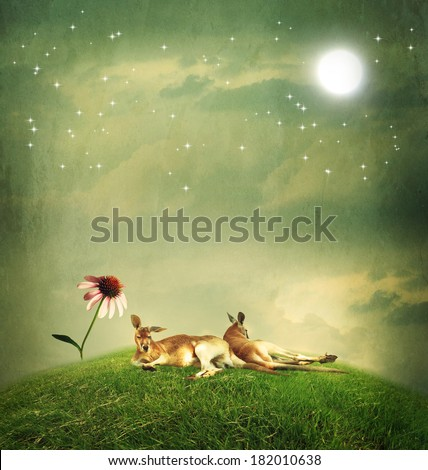 Kangaroo couple relaxing on a hilltop under the moon - stock photo