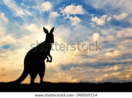 Kangaroo silhouette against a beautiful sky