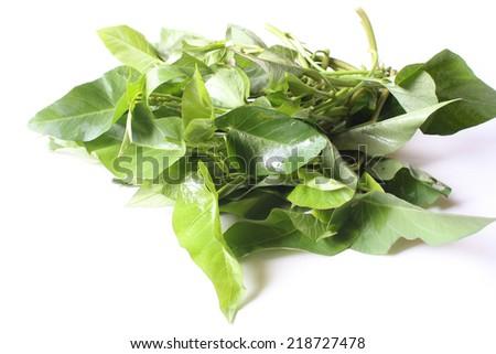 Kangkung - A watercress bunch - stock photo