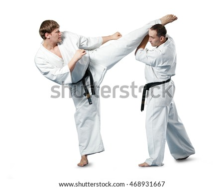 Karate fighters in action on white background