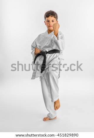 Karate kid posing - stock photo