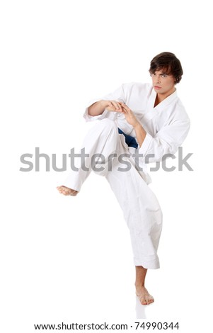 Karate. Man in a kimono , isolated on the white background