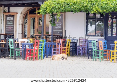 Kas, Turkey, May 8, 2016: Patio cafe with colorful tables and chairs, and sleeping on the sidewalk dog