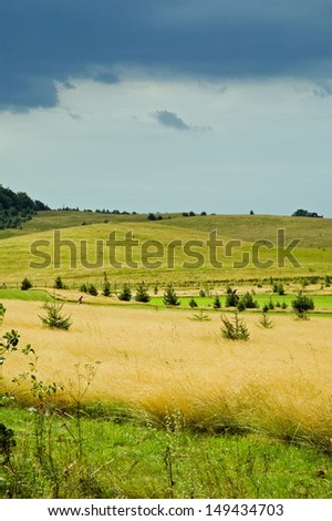 Kaszuby Meadows before Storm, Summertime, Northern Poland