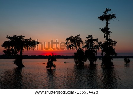 Kayaker Coming in at Sunset - Lake Martin in Breaux Bridge, Louisiana - stock photo