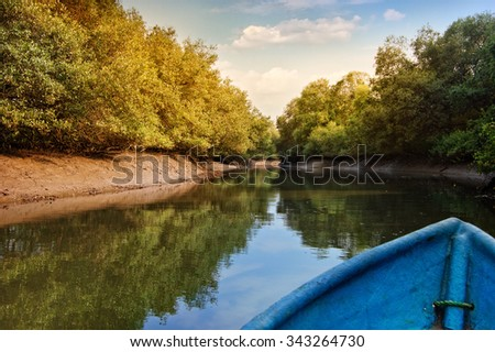 Kayaking in mangrove tunnels in Salim Ali Bird Sanctuary, Goa, India - stock photo