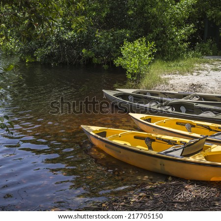 Kayaks prepared for paddling in mangrove tunnels in Everglades national park, Florida, USA - stock photo