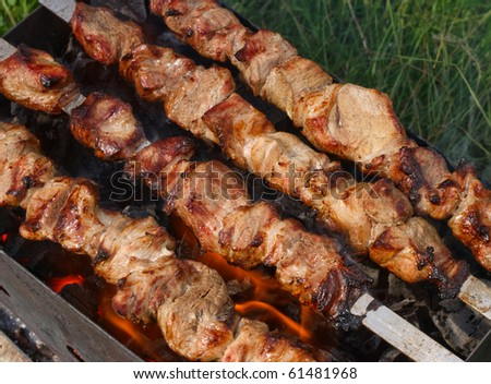 Kebab on a plate on the grass and fire at the background