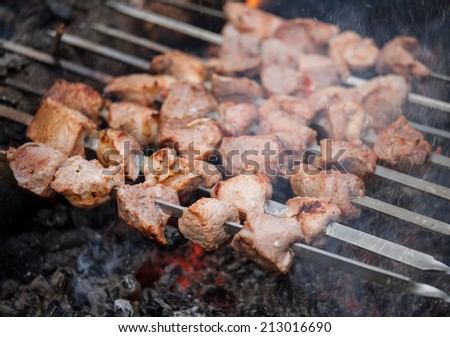Kebab on skewers - closeup shot