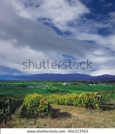 Kelowna orchards and vineyards