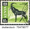 KENYA - CIRCA 1964: A stamp printed in Kenya shows Sable antelope, circa 1964 - stock photo