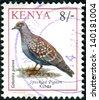 KENYA - CIRCA 1993: Postage stamp printed in Kenya shows the Speckled Pigeon (Columba guinea), circa 1993 - stock photo