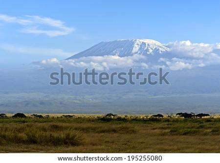 Kenyan Kelimandzharo mountain landscape with snow in summer. Africa, Kenya - stock photo