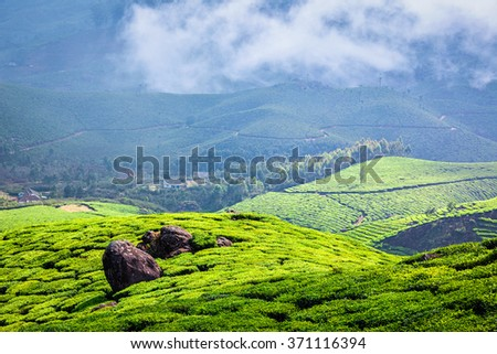 Kerala India travel background - green tea plantations in Munnar with low clouds, Kerala, India - tourist attraction - stock photo