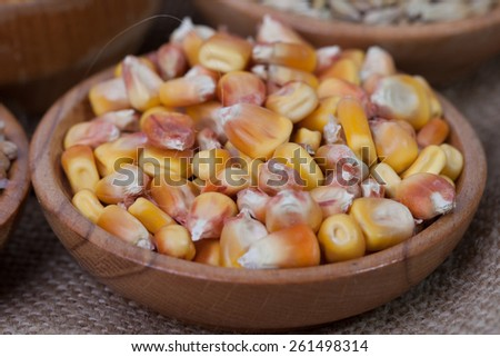 Kernel corn, barley, malt and wheat beans. Grains of corn close-up. Corn on sacking background. Food and agriculture concept - stock photo