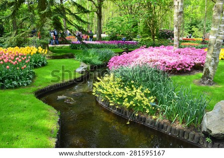 Keukenhof garden, Netherlands -May 10: P.Colorful flowers and blossom in dutch spring garden Keukenhof which is the world's largest flower garden. Keukenhof Garden, Lisse, Netherlands - May 10, 2015
