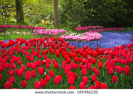 Keukenhof Gardens, Netherlands - stock photo