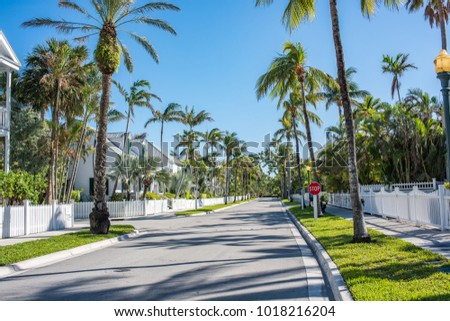 Key West, Florida: December 12, 2017: Beautiful tree lined street in Key West, Florida.  Key West is a popular tourist destination in South Florida.