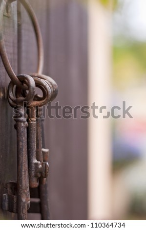keys to the garden - stock photo
