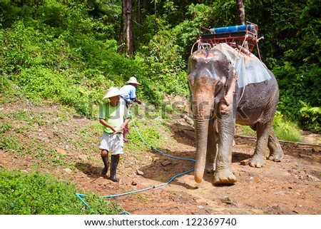 KHAO SOK, THAILAND - NOV 13: Unidentified man with his elephant on the trekking in Khao Sok National Park. This is one of the biggest tourist attraction in Phang Nga province, Thailand, Nov.13, 2012.