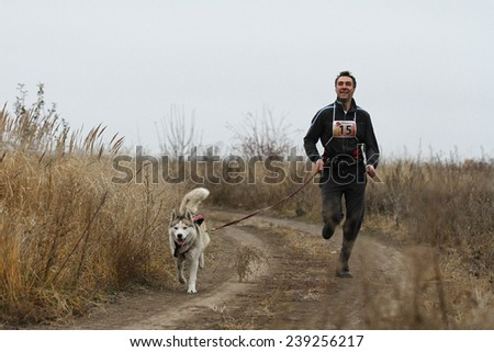 Kharkov, UKRAINE - November 15, 2014: Oleg Rudak at canicross heats during Men's 3100 m at Sled dogs dry land race Autumn Cup - 2014