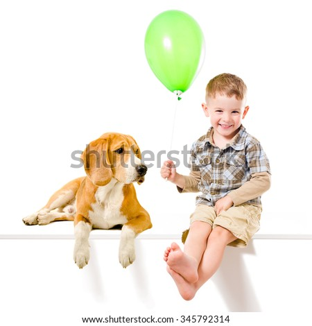 Kid and  Beagle dog playing balloon, isolated on white background  - stock photo