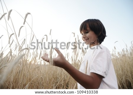 Kid at wheat field holding grain - stock photo