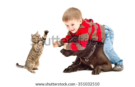 Kid, dog and cat cheerfully playing, isolated on a white background - stock photo