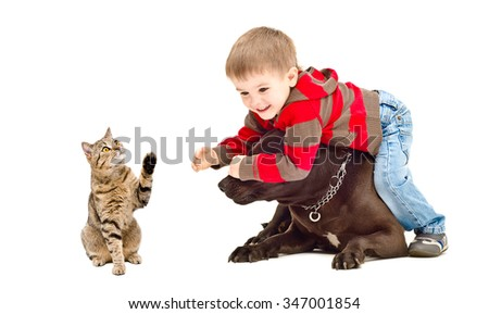 Kid, dog and cat playing isolated on white background - stock photo